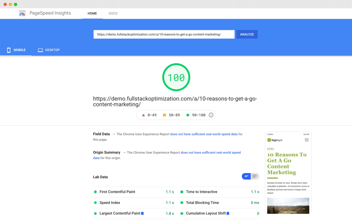 FPS Page Speed Insights 100